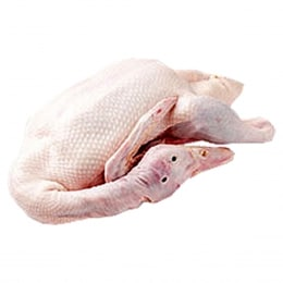 DUCK WHOLE    1300G