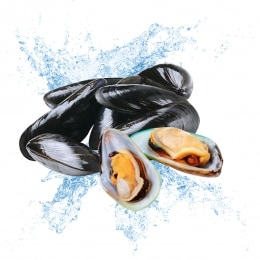 Live Mussel(Around 2.5 Lbs/Pack)