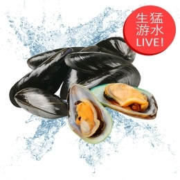 Live Mussel(Around 2 Lbs)