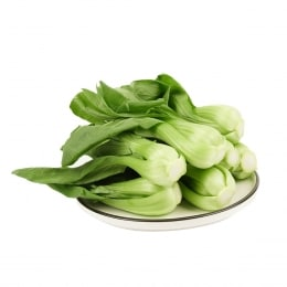 Shanghai Bok Choy Sprout(Around1.5Lbs) 1Pack