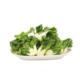 Bok Choy Sprout