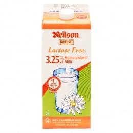 NEILSON HOMOGENIZED LACTOSE/F MILK - 2L