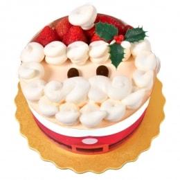 Santa Fruit Cake